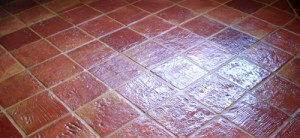 terracotta restoration essex