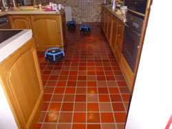 Amtico Floor Essex